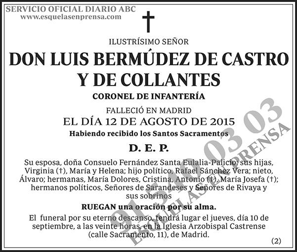 Luis Bermúdez de Castro y de Collantes